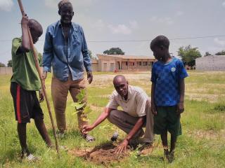 A plantar árboles en la escuela de Louly Sindiane