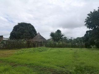 País Bassari en la época de lluvias