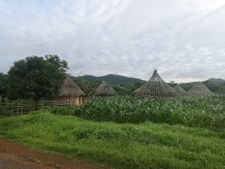 Casas tradicionales circulares en País Bassari