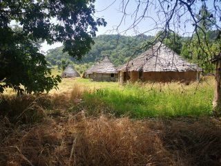 Casas tradicionales de País Bassari